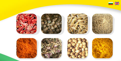spices papper seeds